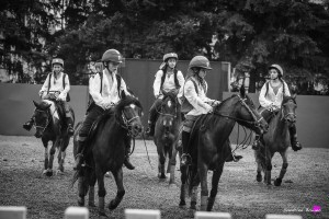 photographe-reportage-spectacle-equestre-equestria-pyrenees-tarbes11