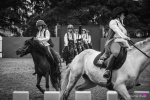photographe-reportage-spectacle-equestre-equestria-pyrenees-tarbes12