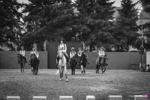 photographe-reportage-spectacle-equestre-equestria-pyrenees-tarbes13