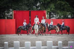 photographe-reportage-spectacle-equestre-equestria-pyrenees-tarbes7