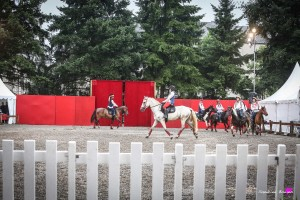 photographe-reportage-spectacle-equestre-equestria-pyrenees-tarbes9
